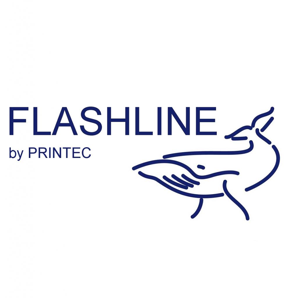 Flashline logo